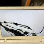 東芝 PT45RGD-SHAの修理 画面割れ 買取も可能!