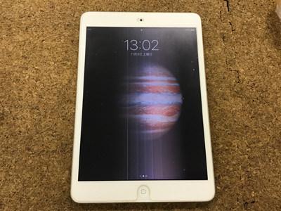 iPad Mini 画面に線